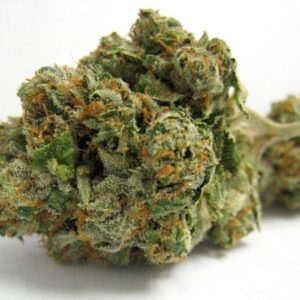 Abusive-OG | Cannabis Express. On-demand Marijuana Delivery in San Francisco and Bay Area. Weed, fast. Medical and Recreational available.